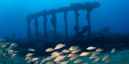 best snorkel snorkeling caribbean hms rhone