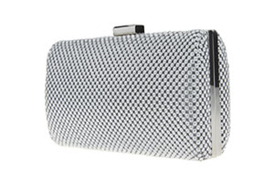 kenney minaudiere glitzy clutch cruise dress