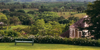Good Hope Plantation in Falmouth, Jamaica