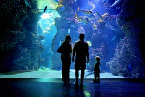 family monaco monte carlo oceanographic museum