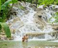 ocho rios jamaica dunns river falls