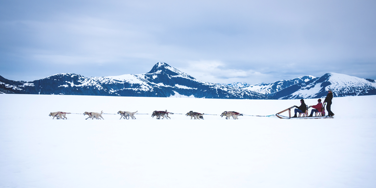 dog sledding alaska shore excursions