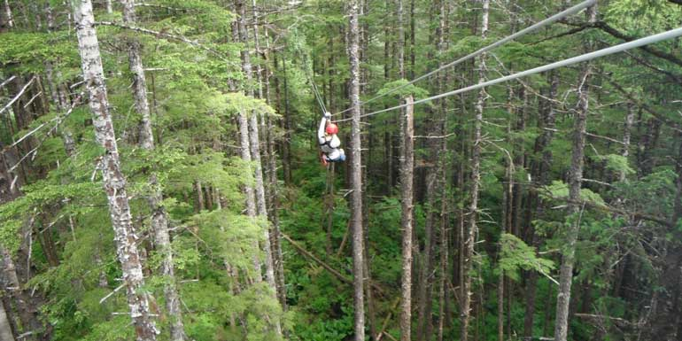zip line alaska cruise excursion