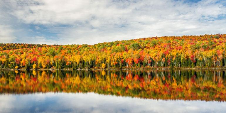 fall foliage cruises canada new england