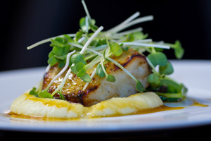 black cod dish on royal caribbean cruise lines