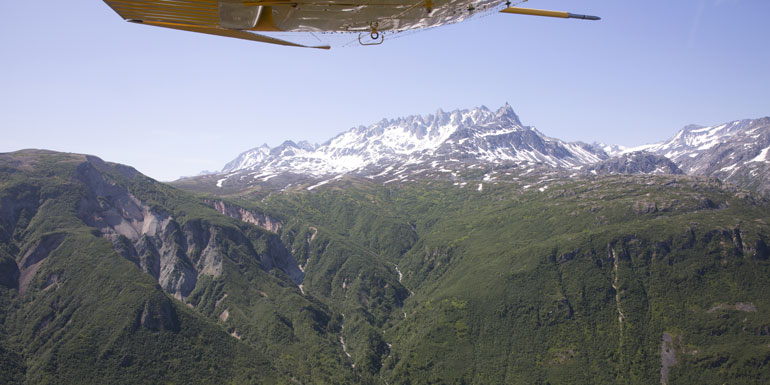 kroschel wildlife center alaska cruise tours