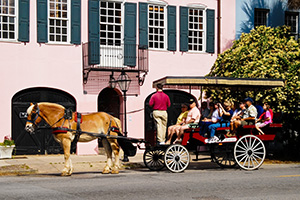 horse carriage charleston south carolina