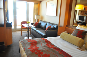 hal veendam vista cabin review