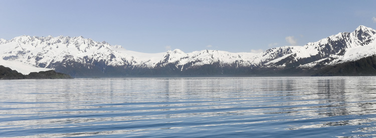 aialik bay gulf of alaska